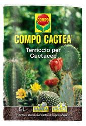 COMPO CACTEA LT.5