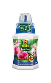 COMPO ORCHIDEE ML.250