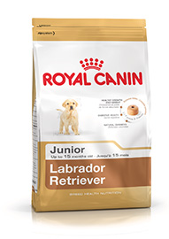 LABRADOR RETRIVER JUNIOR KG.12 ROYAL CANINE