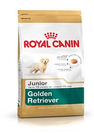 GOLDEN RETRIVER JUNIOR KG.12 ROYAL CANIN