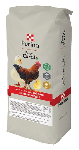 CORTILE GIALLO KG.25 PURINA