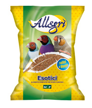 ALLEGRI' ESOTICI KG.4 PETRINI