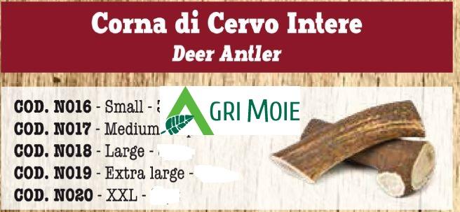 CORNA DI CERVO INTERO EXTRA LARGE