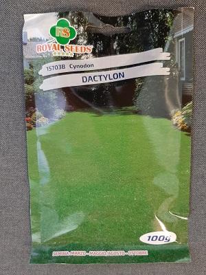 CYNODON DACTYLON GR.100