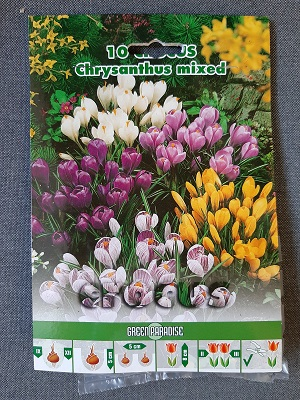 BULBI CROCUS CHRYSANTHUS MIXED PZ 10
