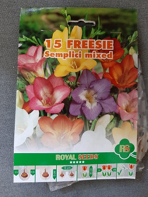 BULBI FRESIE SEMPLICI MIXED PZ 15