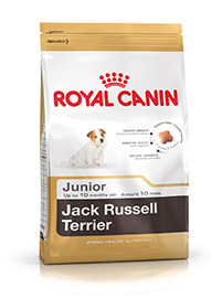 JACK RUSSEL JUNIOR KG. 0,5