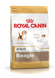 BEAGLE ADULT KG.3 ROYAL CANIN