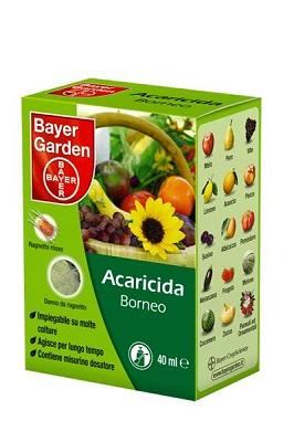 ACARICIDA BORNEO  40 ml